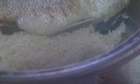 はまぐりを食べたい私。はまぐりがたのサボ、無水鍋の鯛めし。